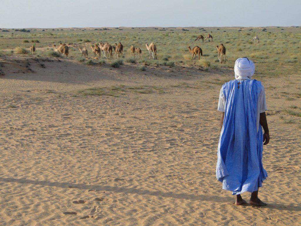 desert-agence-de-voyage-roanne-loire-42-tourisme-afrique-amerique-decouverte-nature-aventure