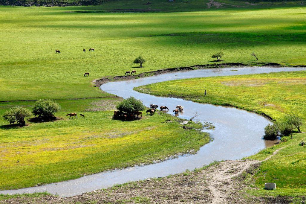 mongolie-voyage-circuit-autentika-agence-decouverte-sejour